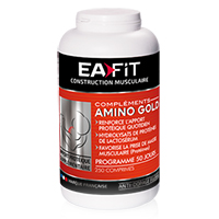 Aminoacidi Amino Gold Ea Fit - Fitnessboutique