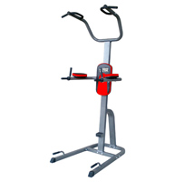 Sedia Romana Tower Pro Fitness Doctor - Fitnessboutique
