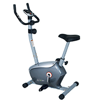 Cyclette  Weslo Alpha 120