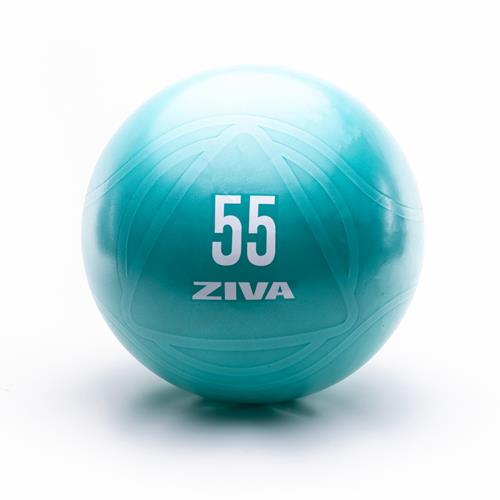 Palle Mediche e Gymballs Ziva CORE FIT BALL