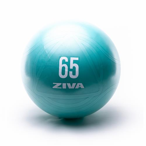 Palle Mediche e Gymballs CORE FIT BALL Ziva - Fitnessboutique
